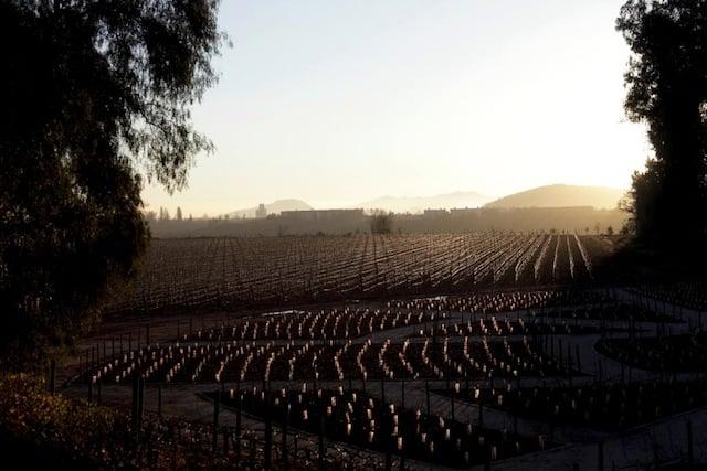 Vinícolas no Inverno em Santiago do Chile