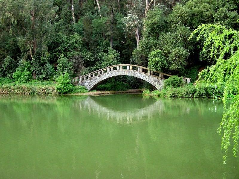 Jardim Botânico Nacional em Viña del Mar