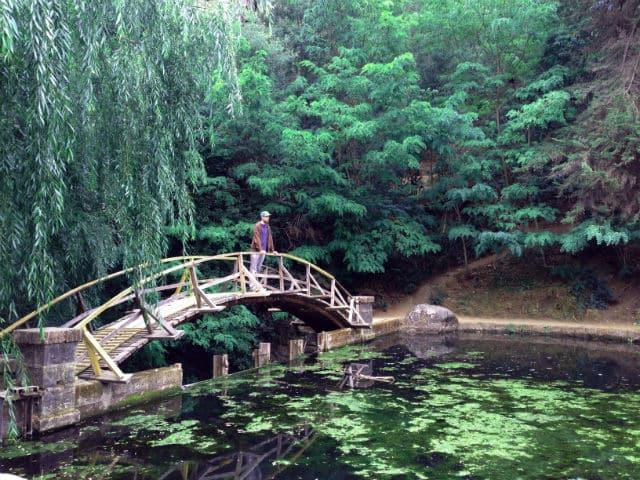 Passeio romântico pelo Jardim Botânico Nacional em Viña del Mar