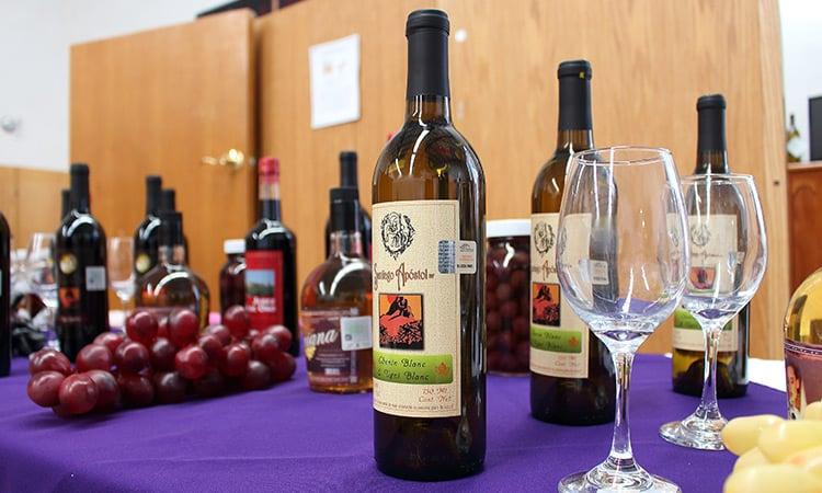 Onde comprar vinhos em Santiago do Chile