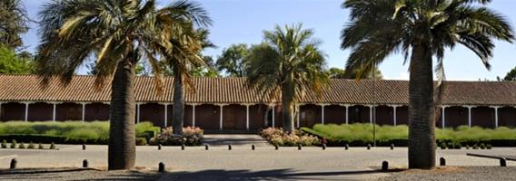 História da Vinícola Santa Rita