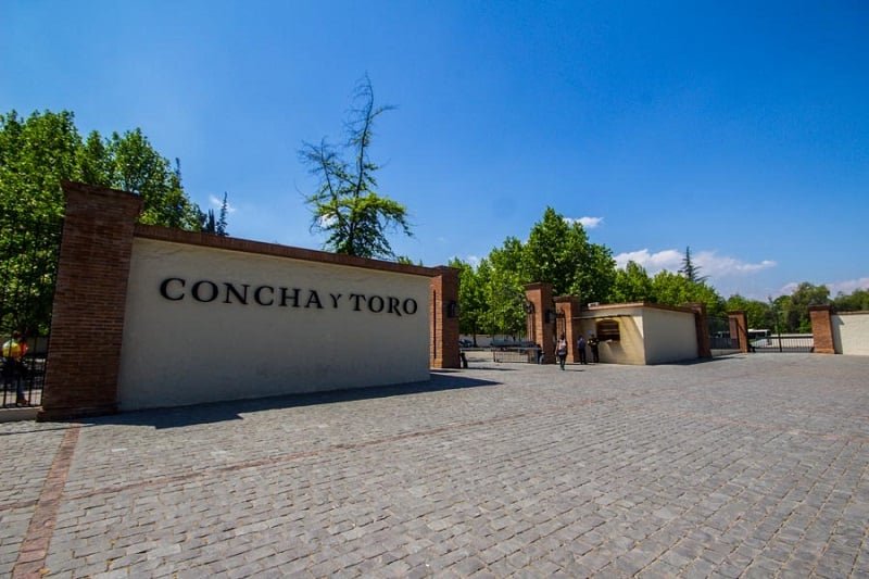 Tour na Vinícola Concha y Toro