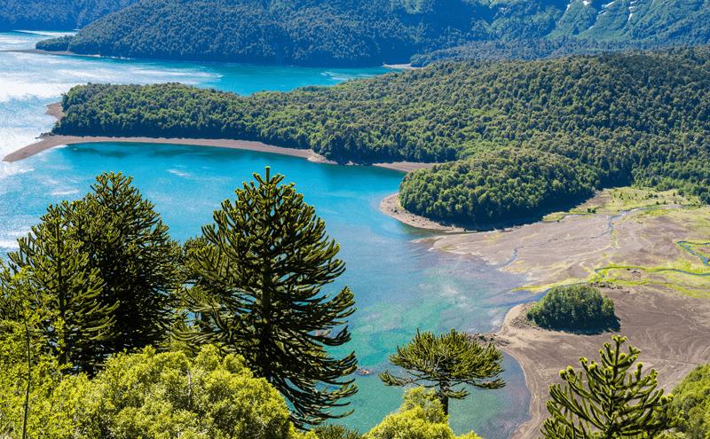 Parque Nacional Conguillio no Chile