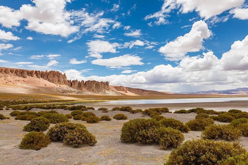 Salar de Tara em San Pedro de Atacama no Chile